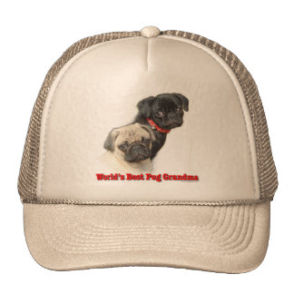World's Best Mesh Hat