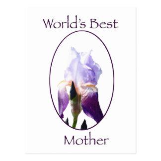 World's Best Mother Notecard Postcard