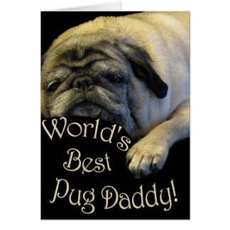 World's Best Pug Daddy Greeting Cards