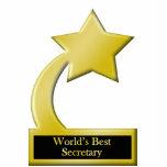 World's Best Secretary, Gold Star Award Trophy Statuette