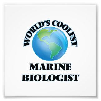 Marine Biology Schools Photo Prints, Marine Biology ...