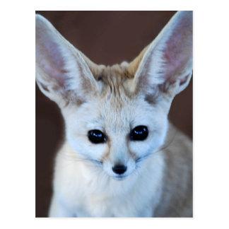 Worlds Cutest Fennec Fox Postcard