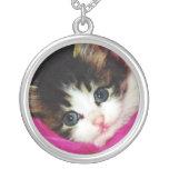 Worlds Cutest Kitten Jewelry