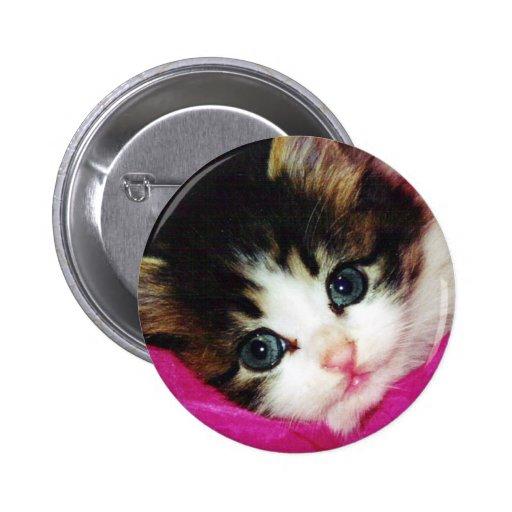 Worlds Cutest Kitten Pin