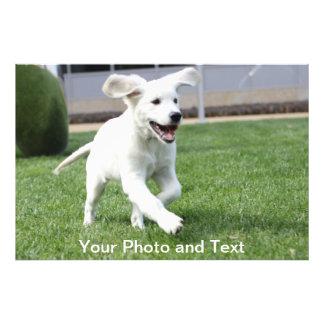 world's cutest puppy photo print