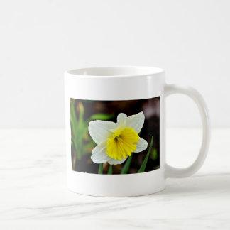World's Greatest Mom Narcissus Mug