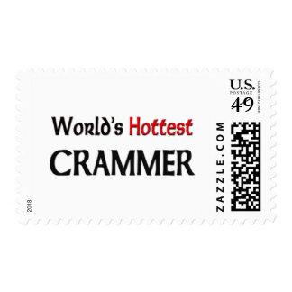Worlds Hottest Crammer Postage Stamp