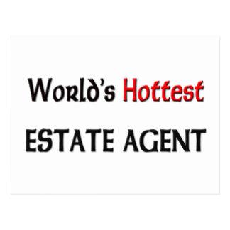 Worlds Hottest Estate Agent Postcard