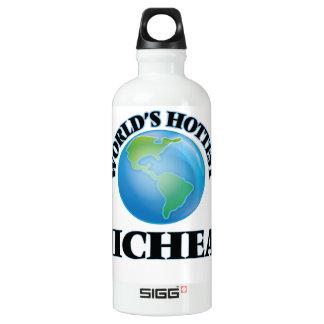 World's Hottest Micheal SIGG Traveler 0.6L Water Bottle
