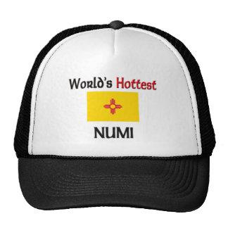 World's Hottest Numi Hats