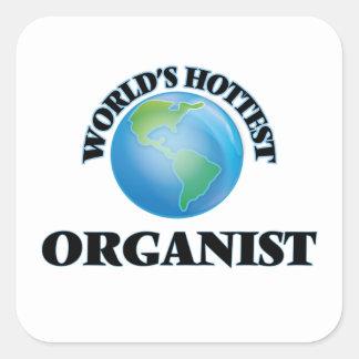 World's Hottest Organist Stickers