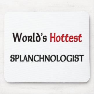 Worlds Hottest Splanchnologist Mouse Pad