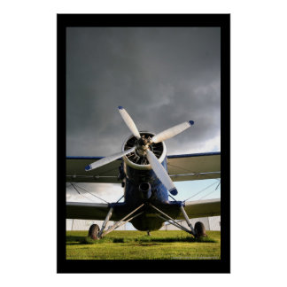 Worlds Largest Biplane Poster