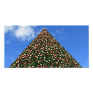 World's Largest Christmas Tree Card