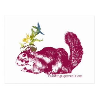 Worlds Only Painting Squirrel,Winkelhimer Smith Postcard