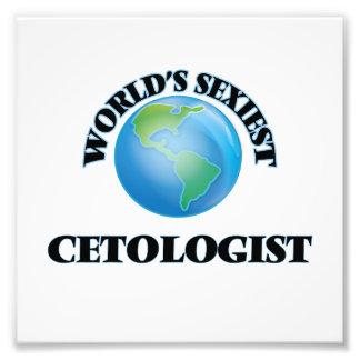 World's Sexiest Cetologist Photo Print