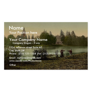 Worlitz Castle and lake, park of Worlitz, Anhalt, Double-Sided Standard Business Cards (Pack Of 100)