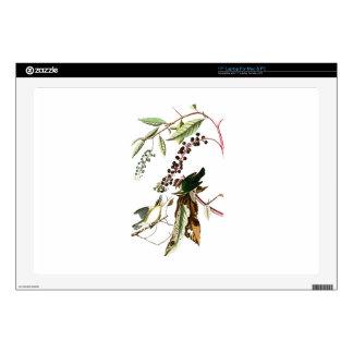 "Worm eating Warbler John Audubon Birds of America 17"" Laptop Decal"