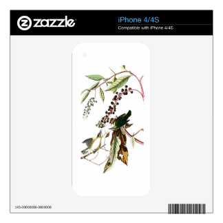 Worm eating Warbler John Audubon Birds of America Skin For The iPhone 4