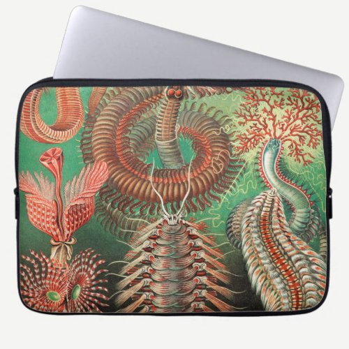 Worms, Annelids Chaetopoda by Ernst Haeckel Laptop Sleeve