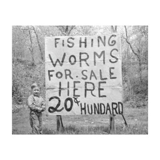 Worms For Sale, 1935 Stretched Canvas Print