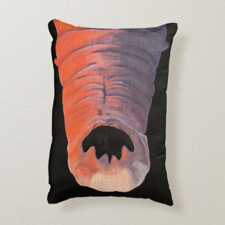 Wormy The Hookworm Pillow