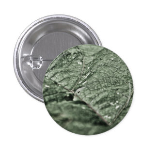 Worn green leaf pin