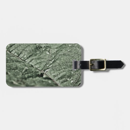 Worn green leaf travel bag tag