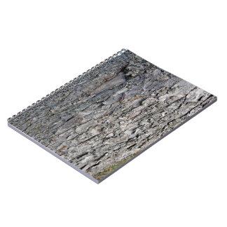 Worn grey wooden tree trunk spiral notebook