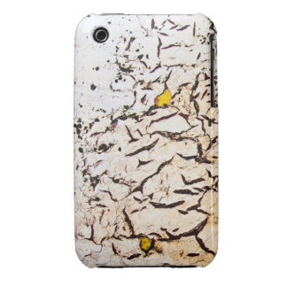 Worn iPhone 3/3GS Barely There case Case-Mate iPhone 3 Cases
