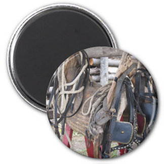 Worn leather horse bridles and bits magnet