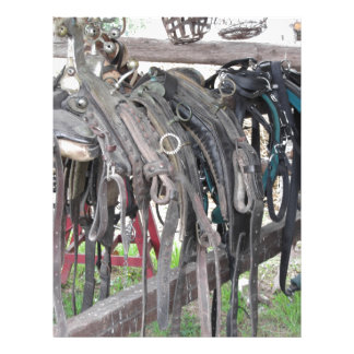 Worn leather horse bridles hanging on wooden fence letterhead