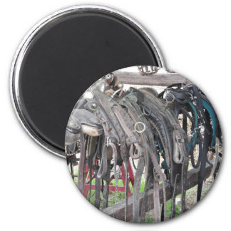 Worn leather horse bridles hanging on wooden fence magnet
