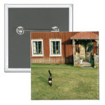 Worn red house with a cat on the lawn. pinback buttons
