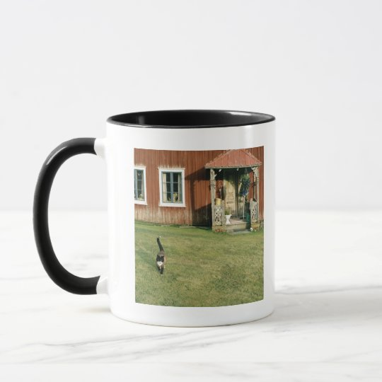 Worn red house with a cat on the lawn. mug