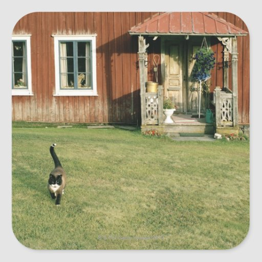 Worn red house with a cat on the lawn. square stickers