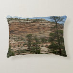Worn Rock Walls in Zion National Park Accent Pillow