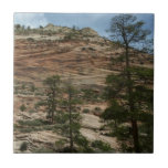 Worn Rock Walls in Zion National Park Ceramic Tile