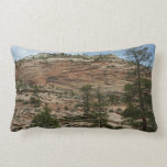 Worn Rock Walls in Zion National Park Lumbar Pillow