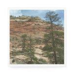 Worn Rock Walls in Zion National Park Paper Napkin