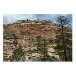 Worn Rock Walls in Zion National Park Photo Print