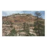 Worn Rock Walls in Zion National Park Sticker