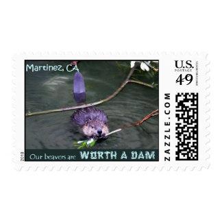Worth A Dam Stamp