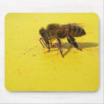 Would You BEE Mine...? Mouse Pads
