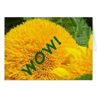 WOW! cards You are Amazing Greeting Cards Floral