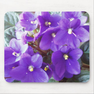 WOW. Just a Beautiful Purple Flower Mouse Pad