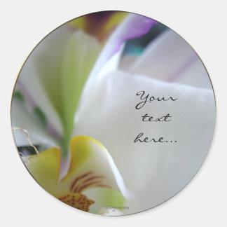 Wow Phalaenopsis Orchid Wedding Invitation Seals