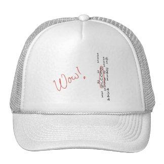 Wow Signal SETI Message Mesh Hat