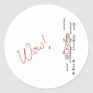 Wow Signal SETI Message Round Sticker