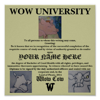 Wow University Diploma -Poster Poster
